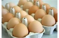Ligne de production de plats a œufs